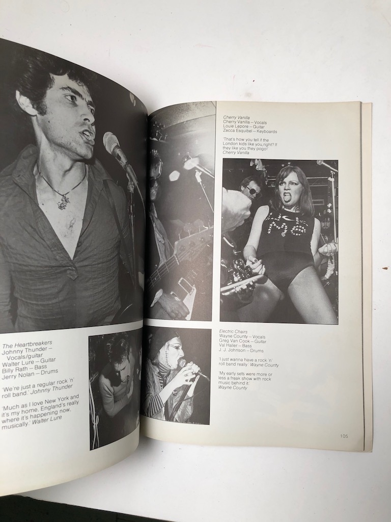 Punk Rock by Virginia Boston Published by Penguin Books 1978 1st Edition 10.jpg