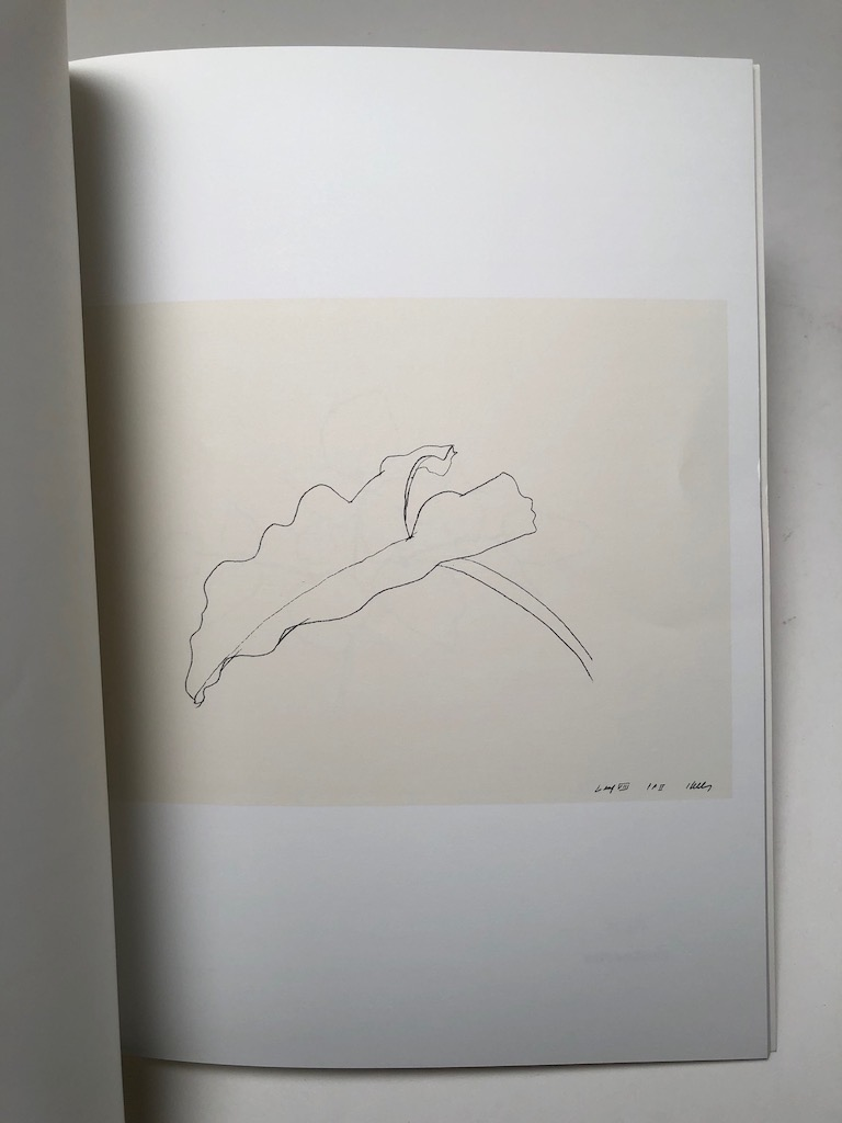 Ellsworth Kelly Plant Lithographs 1973-1997 Susan Sheehan Gallery 6.jpg