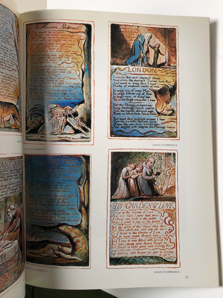 William Blake The Seer and His Work by Milton Klonsky Harmony Books 6.jpg