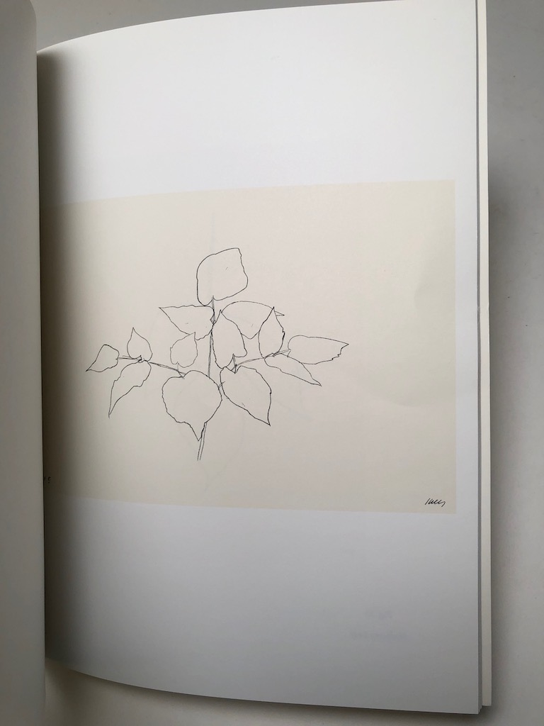 Ellsworth Kelly Plant Lithographs 1973-1997 Susan Sheehan Gallery 7.jpg