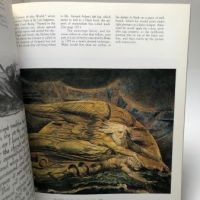 William Blake The Seer and His Work by Milton Klonsky Harmony Books 7.jpg