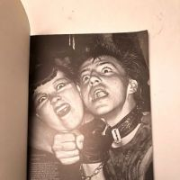 Punk Rock by Virginia Boston Published by Penguin Books 1978 1st Edition 4.jpg