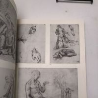 The Drawings of Paul Cezanne a Catalogue Raisonne by Adrien Chappuis 2 volumes in slipcase Pub by New York Graphics Society 1973 20.jpg